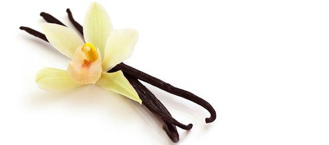 vanillabeans1