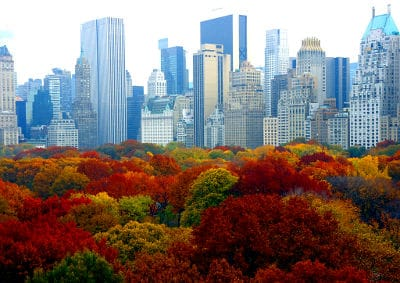 autumn-in-nyc